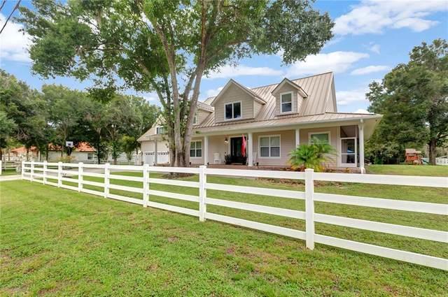 17513 Marsh Road, Lutz, FL 33558 (MLS #T3322423) :: Zarghami Group