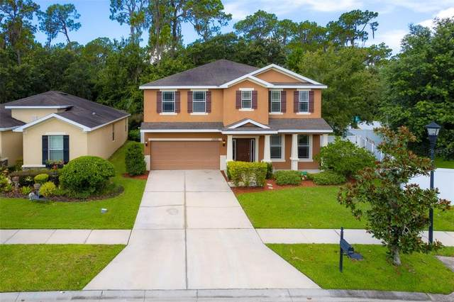 12205 Swaying Moss Circle, Riverview, FL 33569 (MLS #T3322448) :: Everlane Realty