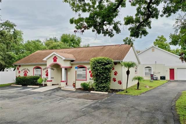 11744 La Madera Boulevard, Port Richey, FL 34668 (MLS #T3322456) :: Team Turner
