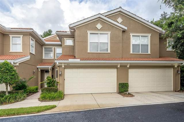 4942 Anniston Circle, Tampa, FL 33647 (MLS #T3322475) :: Cartwright Realty