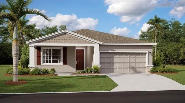 1025 Breggia Court, Haines City, FL 33844 (MLS #T3322610) :: Everlane Realty