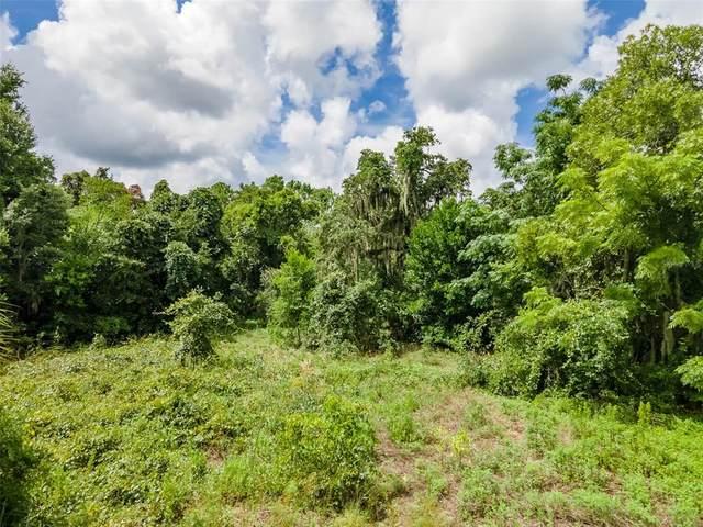 13424 Hicks Road, Hudson, FL 34669 (MLS #T3322844) :: Zarghami Group