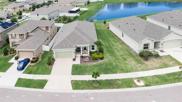 10538 Park Meadowbrooke Drive, Riverview, FL 33578 (MLS #T3322916) :: Zarghami Group