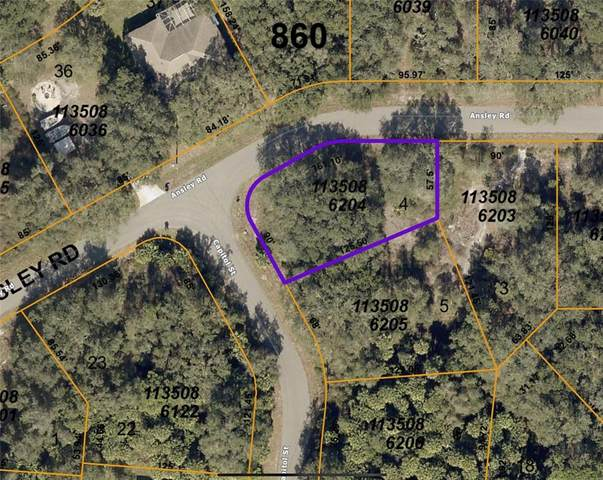 Ansley Road, North Port, FL 34288 (MLS #T3323002) :: The Paxton Group