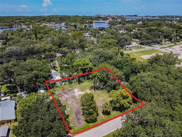 7429 Pulsar Street, New Port Richey, FL 34652 (MLS #T3323020) :: Everlane Realty