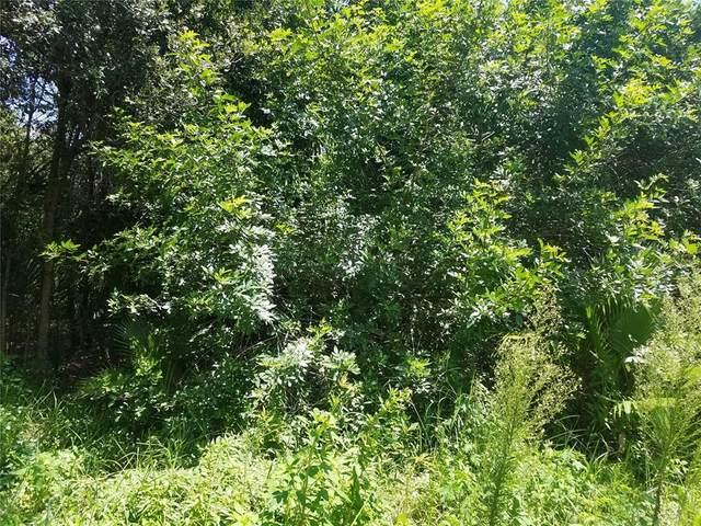 10814 Twin Palms Ranch Road, Gibsonton, FL 33534 (MLS #T3323112) :: GO Realty