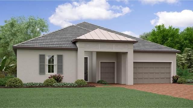 17113 SE 110TH COURT Road, Summerfield, FL 34491 (MLS #T3323239) :: Everlane Realty