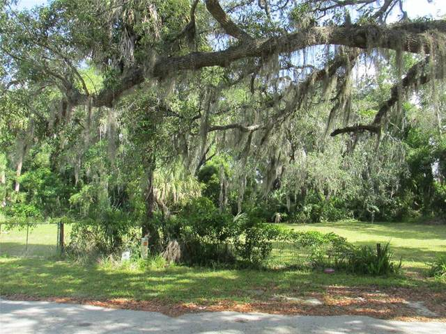 801 Leroy Bellamy Road, Inverness, FL 34450 (MLS #T3323272) :: The Curlings Group