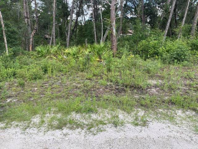 0 Glenarm Way, Weeki Wachee, FL 34613 (MLS #T3323514) :: Premium Properties Real Estate Services