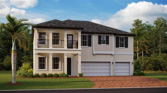 3920 SE 7TH Avenue, Ocala, FL 34480 (MLS #T3323580) :: Zarghami Group