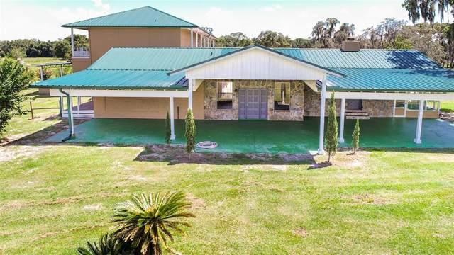 20138 W Bowman Road W, Spring Hill, FL 34610 (MLS #T3323715) :: Zarghami Group