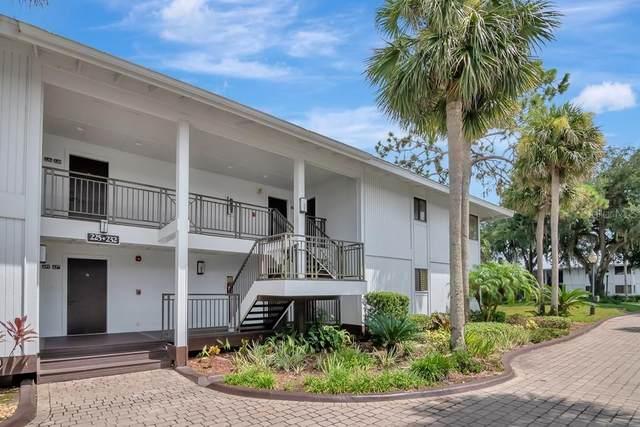 4766 Fox Hunt Drive 229/231, Wesley Chapel, FL 33543 (MLS #T3323822) :: Everlane Realty