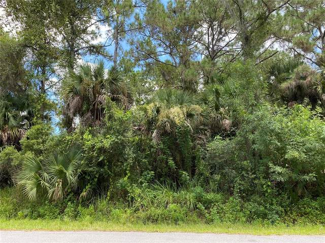 Oporto Street, North Port, FL 34287 (MLS #T3323964) :: The Nathan Bangs Group