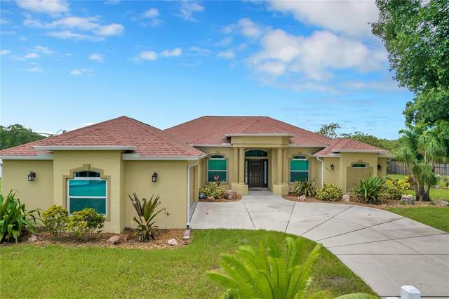 7816 Tollie Lane, Odessa, FL 33556 (MLS #T3324058) :: Vacasa Real Estate