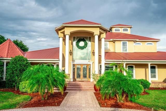 11715 Taylor Road, Thonotosassa, FL 33592 (MLS #T3324221) :: Delgado Home Team at Keller Williams