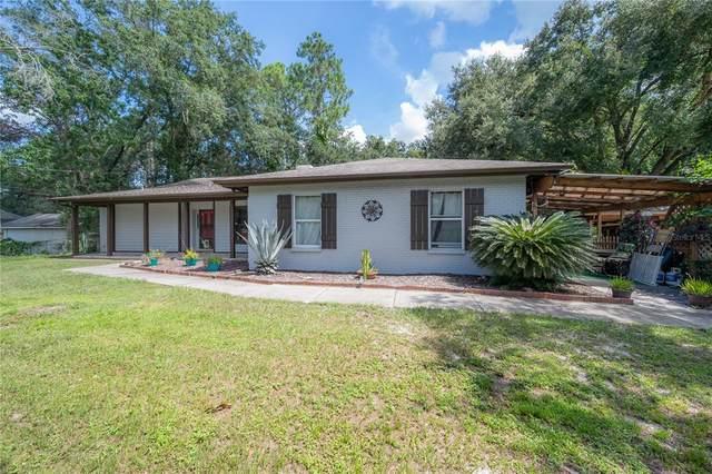 28439 Deedra Drive, Wesley Chapel, FL 33544 (MLS #T3324374) :: Zarghami Group