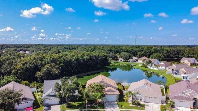 6260 Crickethollow Drive, Riverview, FL 33578 (MLS #T3324649) :: Zarghami Group