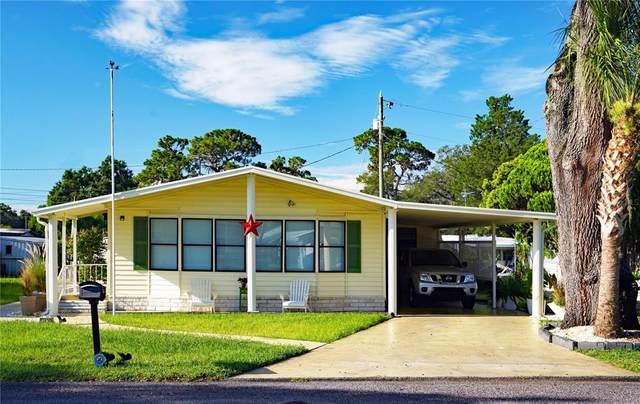 37420 Melinda Avenue, Zephyrhills, FL 33542 (MLS #T3324754) :: Premium Properties Real Estate Services