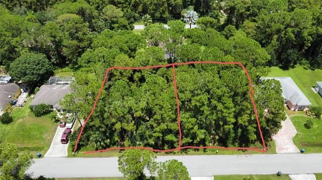 Double Lot Partridge Avenue, North Port, FL 34286 (MLS #T3324860) :: Team Turner