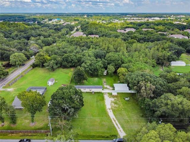 10319 Henderson Road, Tampa, FL 33625 (MLS #T3325069) :: Team Bohannon