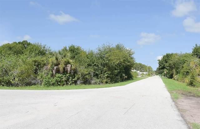 7002 Kaler Street, Port Charlotte, FL 33981 (MLS #T3325122) :: GO Realty