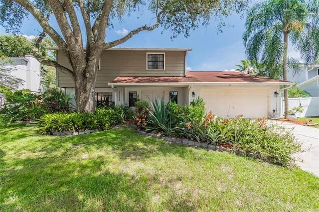 1312 Corner Oaks Drive, Brandon, FL 33510 (MLS #T3325164) :: Zarghami Group