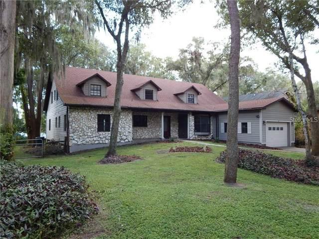 19805 Reading Road, Lutz, FL 33558 (MLS #T3325340) :: Cartwright Realty