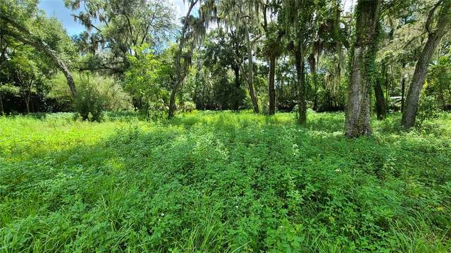 0 Little Road, Valrico, FL 33596 (MLS #T3325446) :: Griffin Group