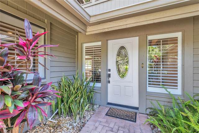 29937 Baywood Lane, Wesley Chapel, FL 33543 (MLS #T3325472) :: Everlane Realty