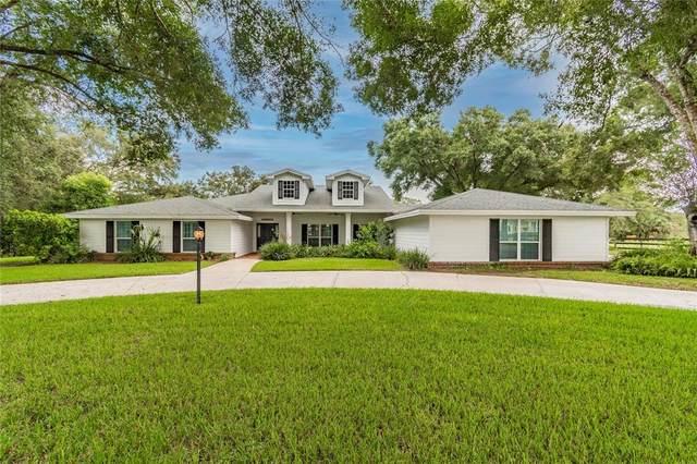 1717 Green Meadow Drive, Lutz, FL 33549 (MLS #T3325623) :: Team Bohannon