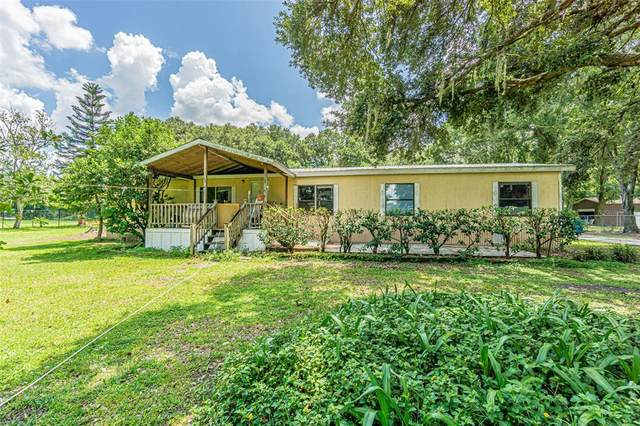 6801 W Knights Griffin Road, Plant City, FL 33565 (MLS #T3325873) :: Zarghami Group