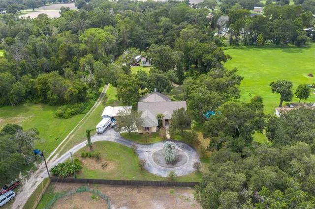 1912 Gallagher Road, Dover, FL 33527 (MLS #T3325997) :: Zarghami Group