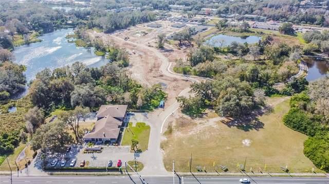 16200 N Nebraska Avenue, Lutz, FL 33549 (MLS #T3326130) :: Future Home Realty