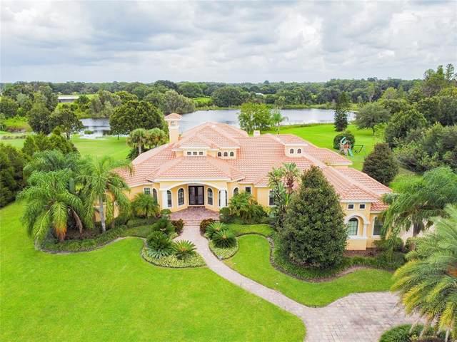 17241 Breeders Cup Drive, Odessa, FL 33556 (MLS #T3326209) :: Vacasa Real Estate