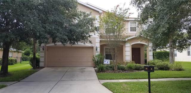 16127 Bridgepark Drive, Lithia, FL 33547 (MLS #T3326220) :: Zarghami Group