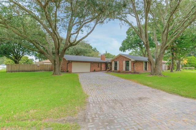 3021 Joan Court, Land O Lakes, FL 34639 (MLS #T3326257) :: Zarghami Group