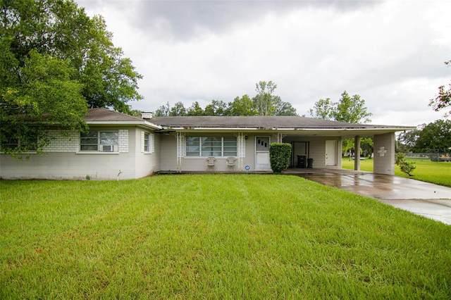 1102 W Pipkin Road, Lakeland, FL 33811 (MLS #T3326391) :: Cartwright Realty