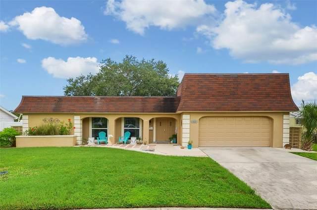 3627 Grayton Drive, New Port Richey, FL 34652 (MLS #T3326437) :: The Curlings Group