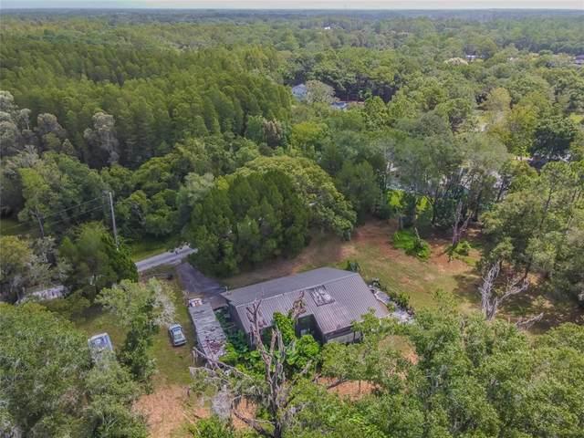 5673 Drexel Road, Land O Lakes, FL 34638 (MLS #T3326499) :: Cartwright Realty