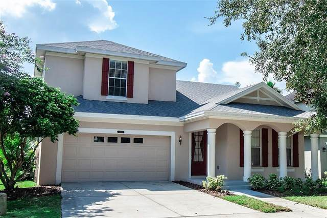 8456 Lagerfeld Drive, Land O Lakes, FL 34637 (MLS #T3326500) :: Carmena and Associates Realty Group