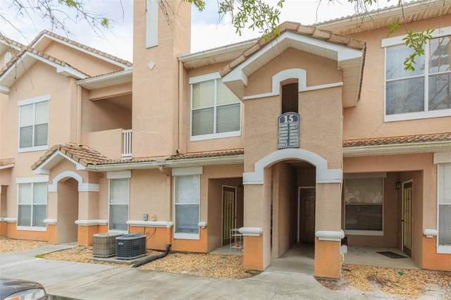 18019 Villa Creek Drive #18019, Tampa, FL 33647 (MLS #T3326539) :: Cartwright Realty