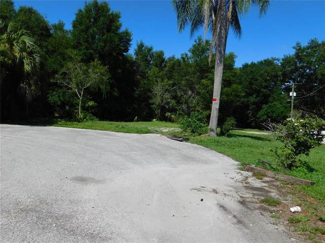 14212 N Florida Avenue, Tampa, FL 33613 (MLS #T3326573) :: The Hustle and Heart Group