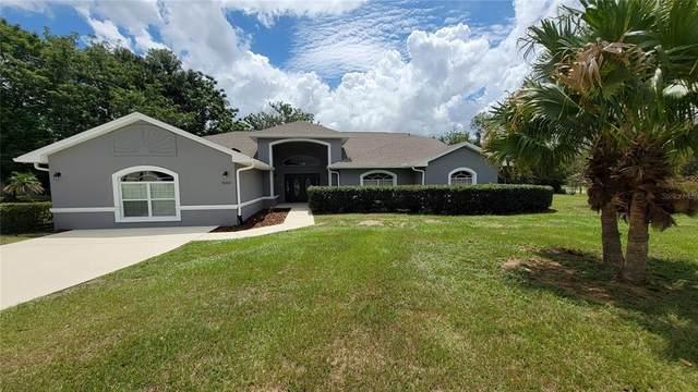 15272 Spinning Wheel Lane, Brooksville, FL 34604 (MLS #T3326683) :: The Nathan Bangs Group