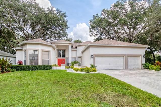 6606 Stonington Drive N, Tampa, FL 33647 (MLS #T3326806) :: Team Bohannon