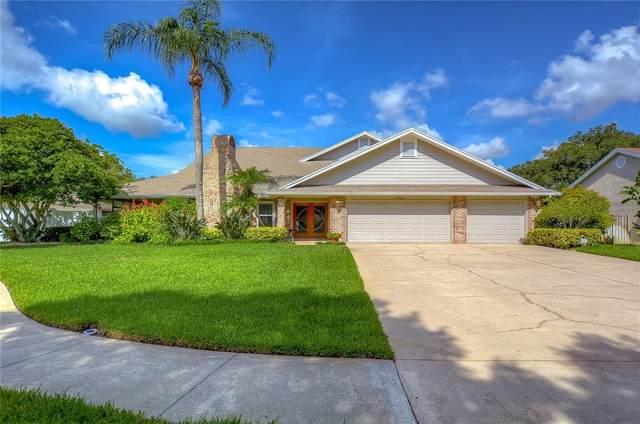 3304 Westmoreland Drive, Tampa, FL 33618 (MLS #T3326889) :: Stiver Firth International