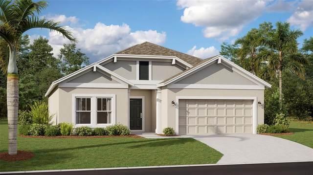 1033 Breggia Court, Leesburg, FL 34788 (MLS #T3326963) :: Everlane Realty