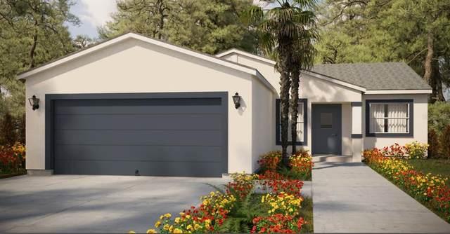 000 SW 45TH Circle, Ocala, FL 34473 (MLS #T3327051) :: Premium Properties Real Estate Services