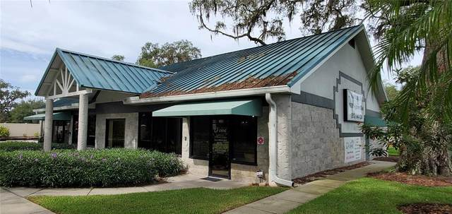 1935 Highland Oaks Boulevard, Lutz, FL 33559 (MLS #T3327112) :: Team Bohannon