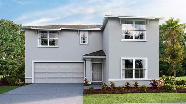 36380 Spanish Rose Drive, Dade City, FL 33525 (MLS #T3327138) :: Zarghami Group
