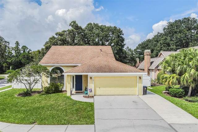 7109 Condor Court, New Port Richey, FL 34655 (MLS #T3327145) :: Prestige Home Realty
